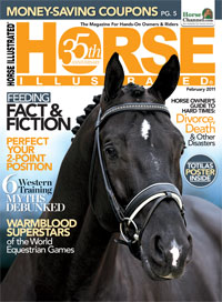 Horse Illustrated Cover