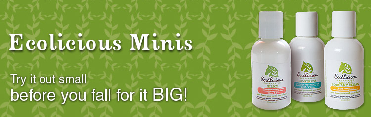 ecolicious minis banner