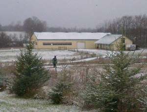 Joyce eco barn