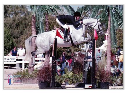 Lauren Show Jumping