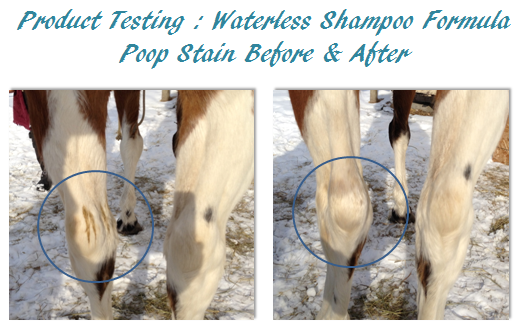 waterless shampoo before and after