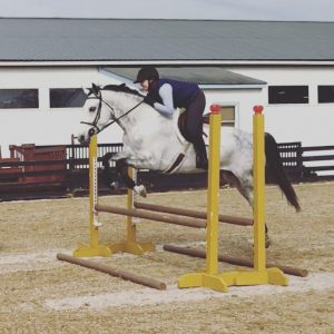 dappled grey horse jumping